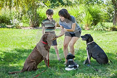 Mother and son training dogs with treats