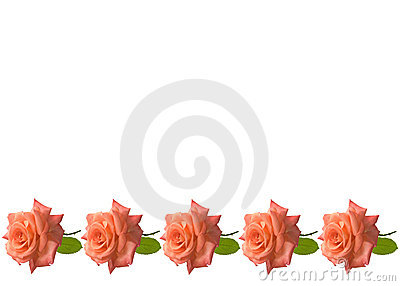 Mothers day roses card background