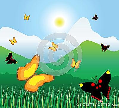 Motley butterflies fly on a mountain meadow