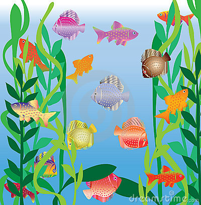 Motley small fishes swim in an aquarium