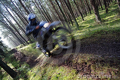 Motocross through forest