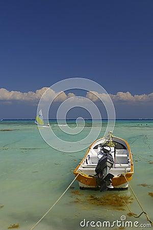 Motor boat in tropics