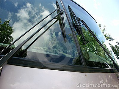 Motor home windshield