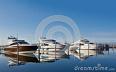 Motor yachts in marina