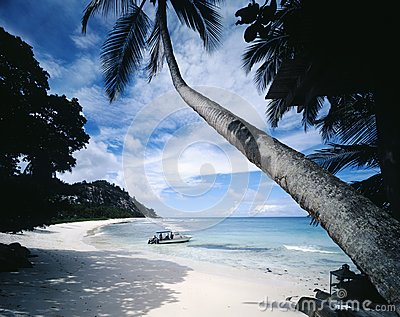 Motorboat on Tropical Beach