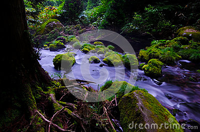 Mototaki River, Japan.