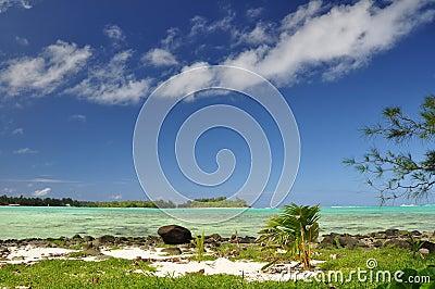 Motu Taakoka - Rarotonga, cook Islands