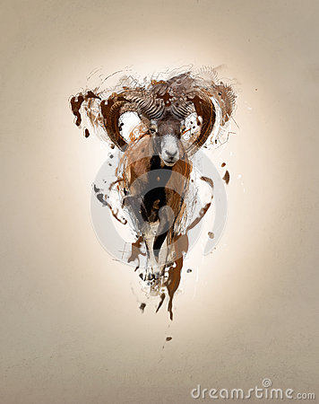 Free Mouflon, Abstract Animal Concept Stock Photography - 48553932