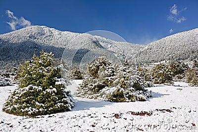 Mount Giona Winter