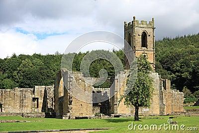 Mount Grace Priory Apple Tree