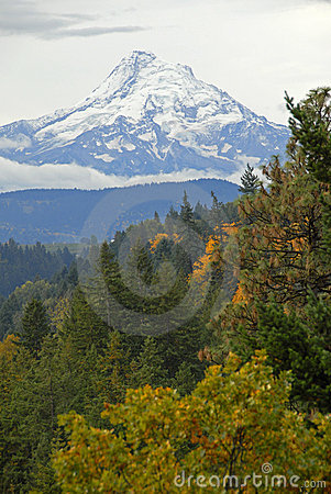 Free Mount Hood Royalty Free Stock Photography - 6930927
