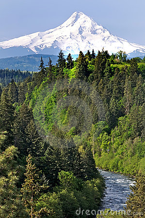 Free Mount Hood With River In Foreground Royalty Free Stock Image - 5059926
