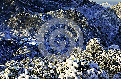 Mount Huangshan in winter