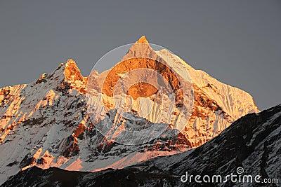 Mount Machhapuchhre