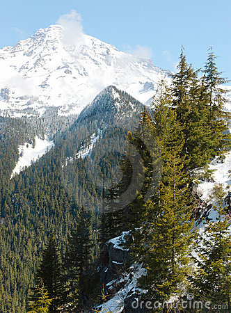 Mount Rainier forests and snow