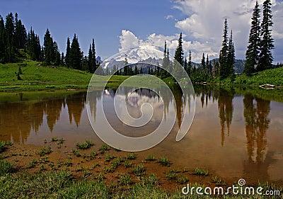 Mount Rainier & Upper Tipsoo Lake