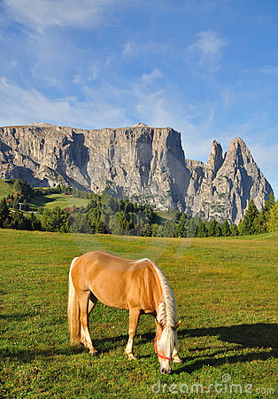 Mount Sciliar,Dolomites,South Tyrol