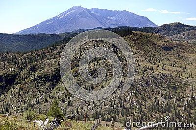 Mount St. Helens Blast Zone