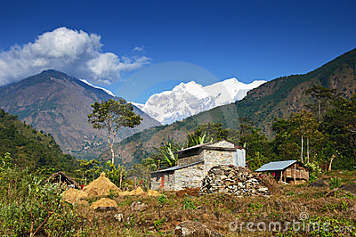 Mountain Agricultural landscape of Nepal
