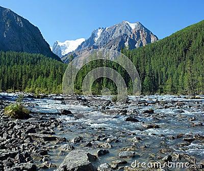 Mountain Altai. The river Shavla.