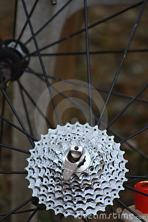 Mountain bike gears