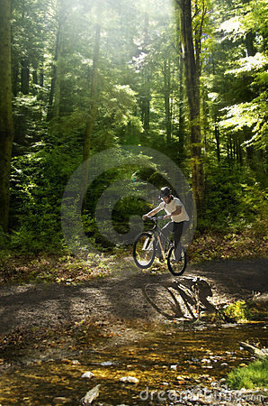Free Mountain Biker Royalty Free Stock Images - 23444139