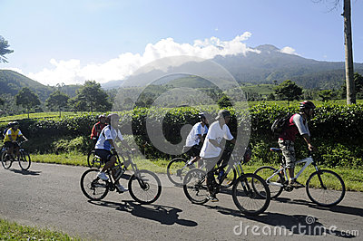 Mountain biker Editorial Stock Image