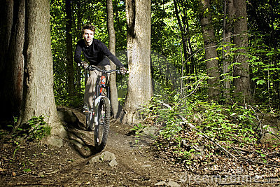 Mountain biker riding through trees