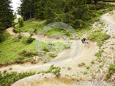 Mountain Bikers riding through woods
