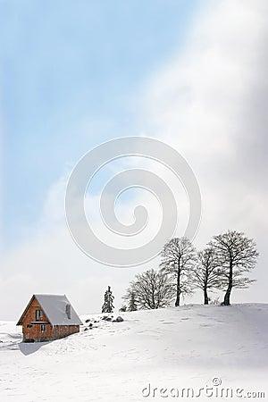 Mountain chalet in winter