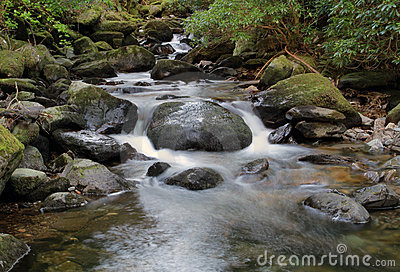 Mountain creek - Ireland