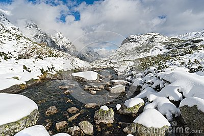 Mountain Creek in Tatra Mountains