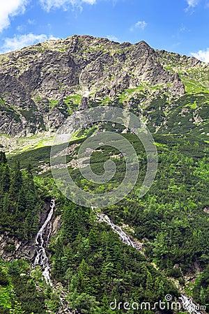 Mountain creek in Tatra National Park