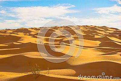 Mountain of dunes
