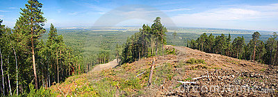 Mountain forested