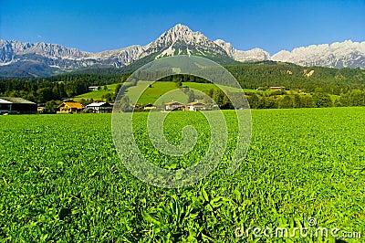 Mountain from Kaisergebirge
