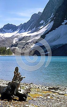 Mountain Lake, Kootenay National Park, Canada.