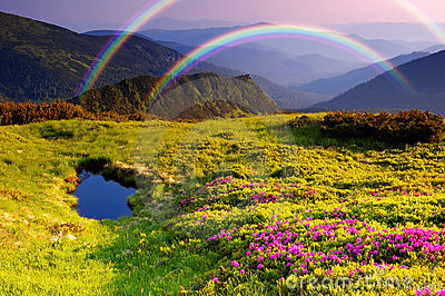 Mountain landscape with Flowers and a rainbow