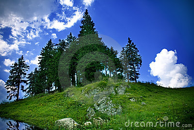 Mountain landscape - green grass, trees and sky