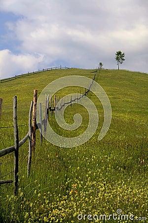Mountain landscape VI