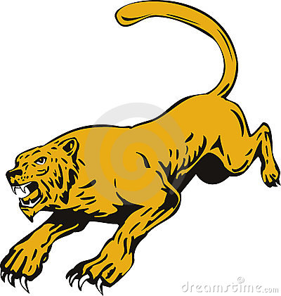 Free Mountain Lion Ready To Attack Stock Photography - 7211172
