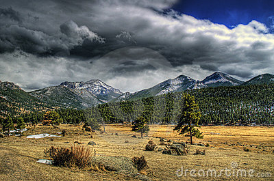 Mountain Meadow in HDR