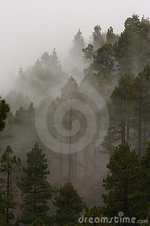 Mountain Mist Stock Photography - Image: 434622