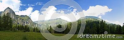 Mountain Panorama Gender