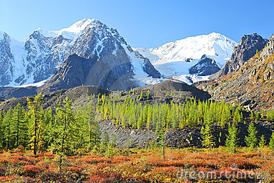 Mountain peaks and larch forest