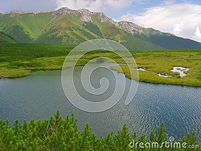 Mountain pond in Slovak High Tatras