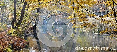 Mountain river in beechen autumn wood