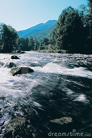 Mountain river with clean water.