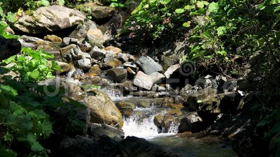 Mountain river flows between stones on a sunny day. Water flows through the rocks. Beautiful nature background stock video