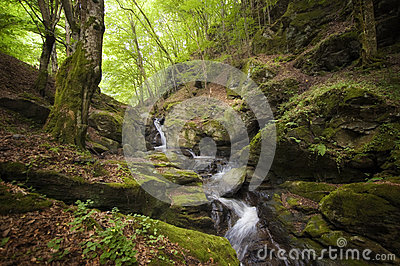 Mountain river with rocks Stock Photo